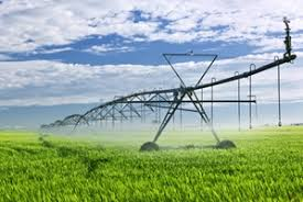 Irrigation networks